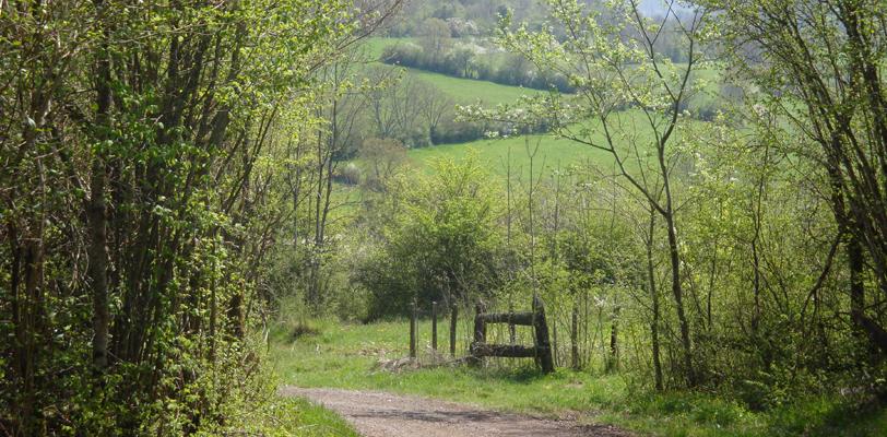 vue_paysage_alentour_