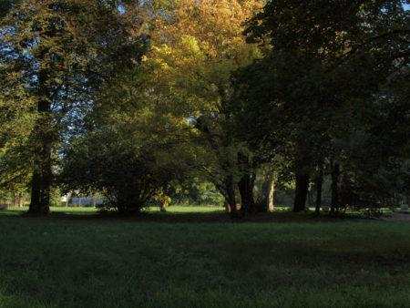 Parc du château de Lusigny - l'automne